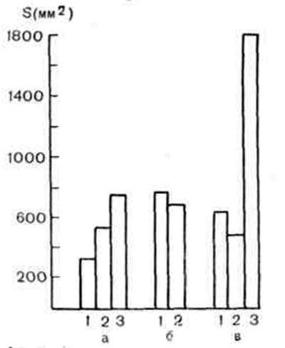 Лдг в цитоплазмі культури фек, інфікованої онковірус а12